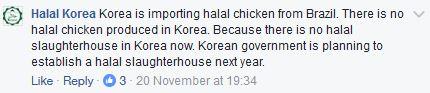 halal-korea
